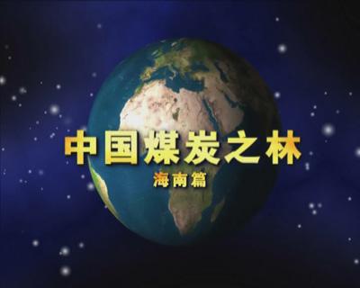 中国煤炭之林——海南篇