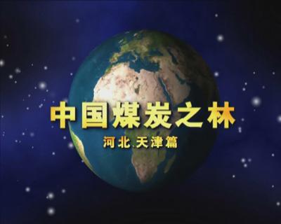 中国煤炭之林——河北天津篇