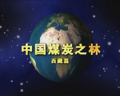 中国煤炭之林——西藏篇
