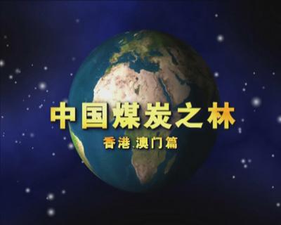 中国煤炭之林——香港澳门篇